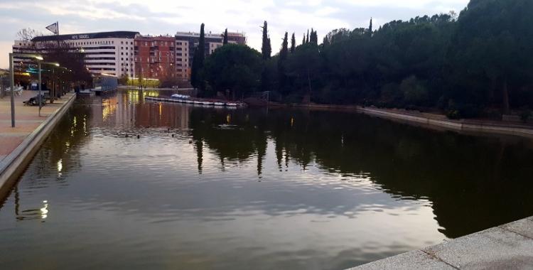 Fotografia del llac del Parc Catalunya (Sabadell) - © Núria García
