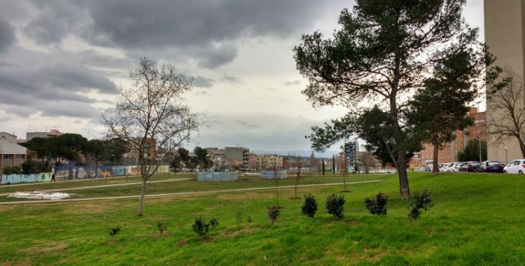 La plantació d'arbres al Parc del Nord va començar al gener