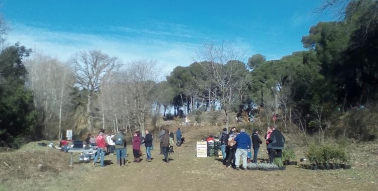 10a Festa del Parc Agrari de Sabadell   Pere Gallifa