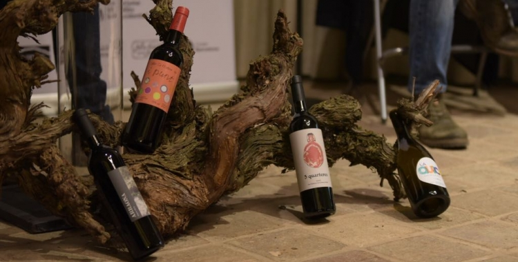 Els vins que participen d'Al Vallès, veremem! | Roger Benet