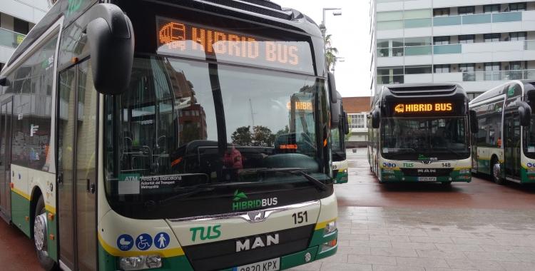 Durant la jornada d'avui, els 14 autobusos han estat exposats a Fira Sabadell | Helena Molist
