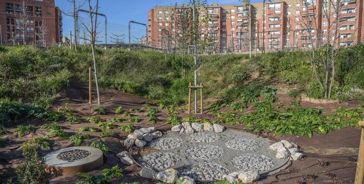 Les noves zones verdes de la plaça d'Espanya | Roger Benet