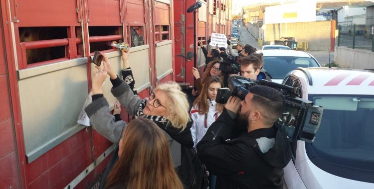 Vetlla animalista  davant de l'Escorxador de Sabadell | Pau Duran