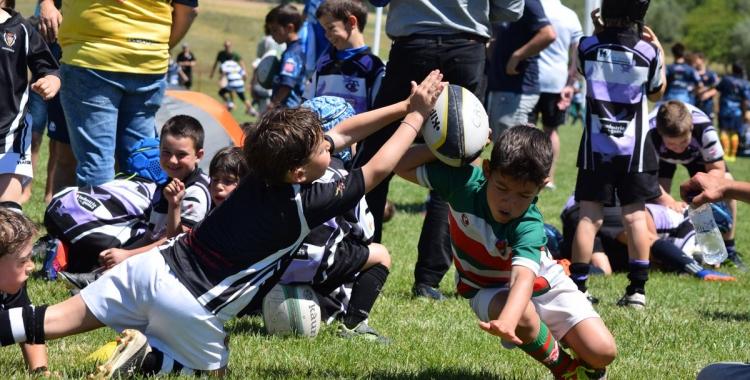 Imatge del Torneig Mussol organitzat dissabte passat pel Sant Quirze a Castellar | RC Sant Quirze