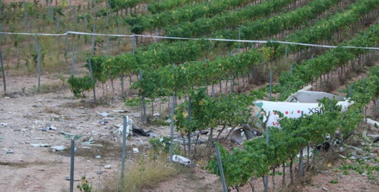 L'avioneta s'havia enlairat a l'aeroport de la ciutat i s'ha estavellat al Baix Penedès | ACN