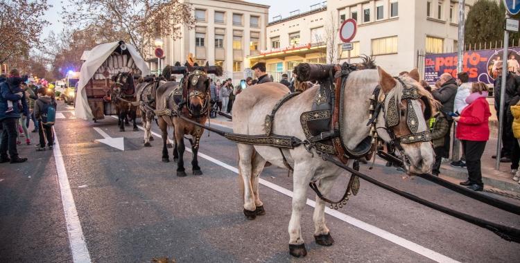 Una vuitantena de carruatges han envaït els carrers de Sabadell en la Passada de Sant Antoni | Roger Benet