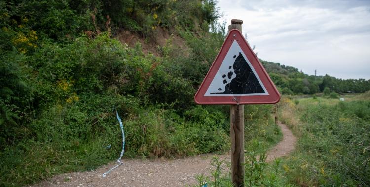 Un dels trams afectats per esllavissades al Ripoll/ Roger Benet