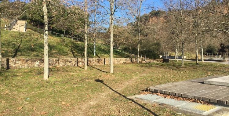 Imatge dels arbres que van provocar l'esllavissada de la Séquia del Monar/ Aleix Graell