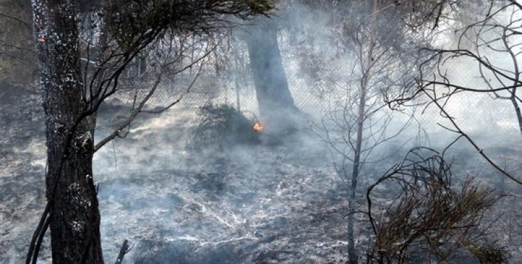 Els boscos del Vallès tenen un risc més alt d'incendi per culpa de la pandèmia   Arxiu
