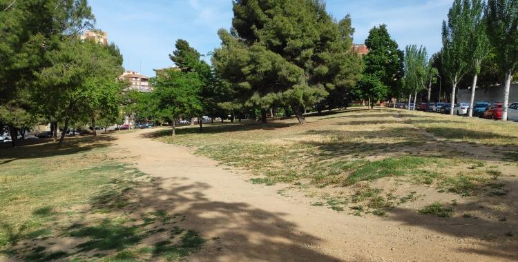 El camí d'aquest espai verd s'adequarà amb il·luminació i bancs   Pau Duran