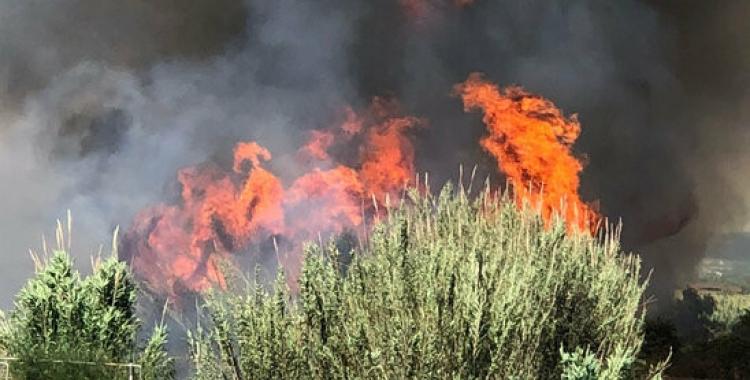 Un incendi de matolls/ ACN
