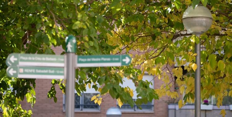 Zona verda de Sabadell   Roger Benet