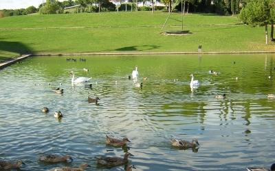 Imatge del Parc Catalunya de Sabadell