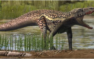 L'animal hauria tingut aquest aspecte segons els investigadors | ICP