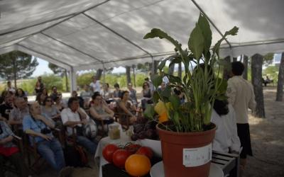 """Moment d'una de les """"Showcookings"""" del dia. Foto: Ràdio Sabadell. Autor: Aleix Graell"""