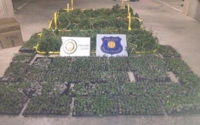 Alguns dels elements intervinguts | Policia Sabadell