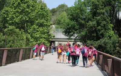 Un grup dels alumnes participants al Campus de la UAB | FAS
