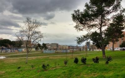 El Parc del Nord a l'inici de les plantacions