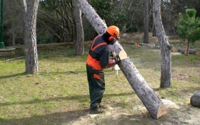 Jardiner de CIPO treballant | CIPO SCCL