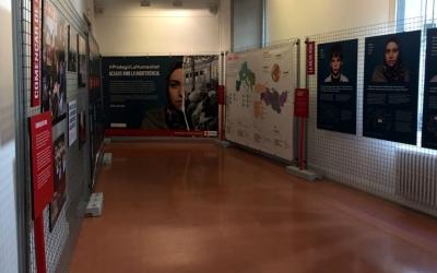 Imatge de la mostra de la Creu Roja a l'Aliança/ Creu Roja