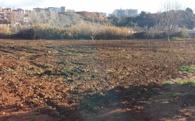 Terrenys de l'Horta d'enRomau | Pau Duran