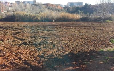 Les parcel·les adequades a l'horta d'en Romau fan un total de 90 metres quadrats.