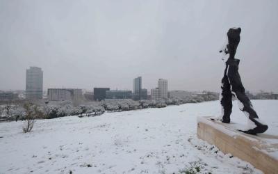 Sabadell s'ha despertat amb una capa de neu de fins a 4 centímetres. Foto: Roger Benet