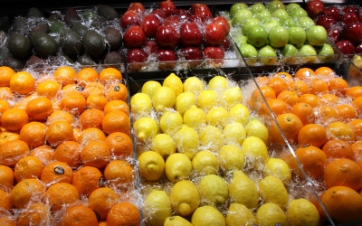 Les dietes cada cop són menys equilibrades/ ACN