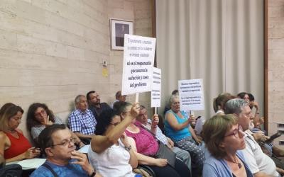 Els afectats per la plaga de xinxes s'han concentrat al Ple/ Karen Madrid
