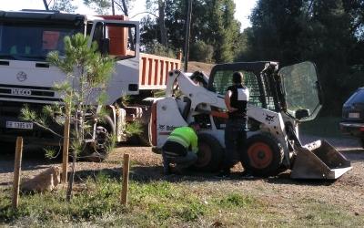Feines de manteniment als camins del Bosc de Can Deu | Cedida