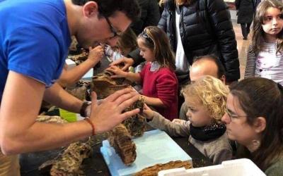 Petits i grans van participar a l'activitat de fer pessebres al Mercat Central | Cedida
