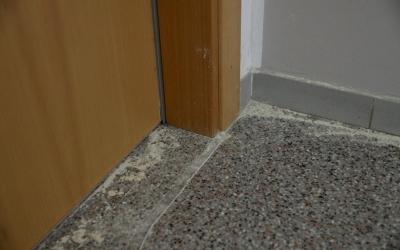 Imatge dels pisos afectats per les xinxes on s'ha començat a actuar avui | Roger Benet