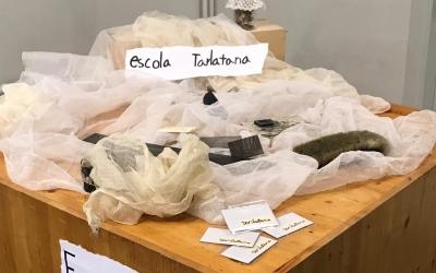 Instal·lació per presentar el canvi del nom de l'escola Tarlatana | Cedida