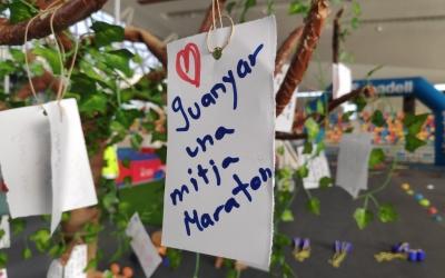 L'arbre dels desigs esportius és el primer que troben els infants a la zona d'activitats   Pau Duran