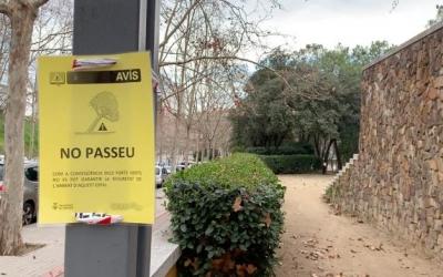 L'Ajuntament activa el Pla de Protecció Civil Municipal en fase d'alerta pel vent i la pluja   Roger Benet