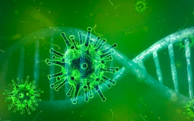 El coronavirus continua expandint-se | Departament de Salut