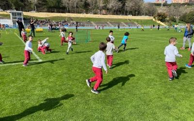 L'esport escolar no se salva de les mesures preventives pel coronavirus | CEVO Sabadell