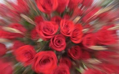Els carrers no s'ompliran aquest any de parades de roses i llibres | Roger Benet