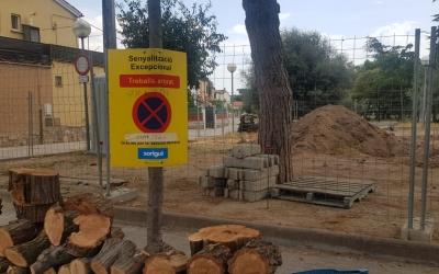 La remodelacoó del parc infantil del barri comporta la supressió i el trasllat d'algunes espècies   | Raquel García