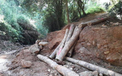 Les obres han començat a mitjans de juliol i es preveu que acabin abans d'acabar el mes | Ajuntament de Sabadell