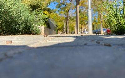 La dona es va accidental amb aquests caragols de la vorera del carrer de Malta   Cedida