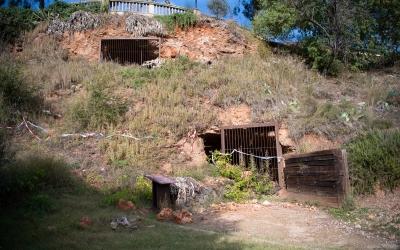 Els despreniment han fet perillós l'accés a les coves de Sant Oleguer | Roger Benet
