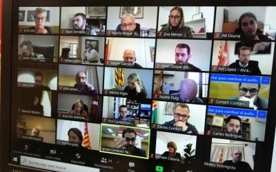 El Consell d'Alcaldies s'ha reunit en format virtual | Cedida