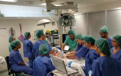 L'equip de cirugia pediàtrica/ Taulí