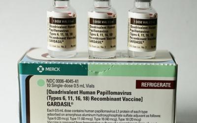 Imatge de la vacuna del papil·loma humà | Cedida