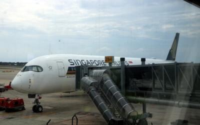 Un avió a la T1 de Barcelona | ACN