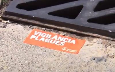 Senyal que indica un tractament antiplagues/ Ajuntament de Sabadell